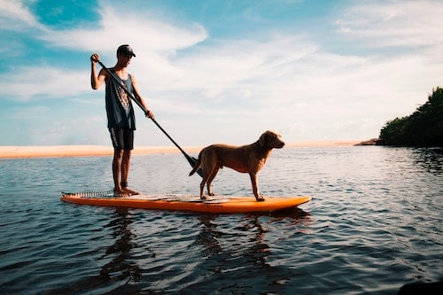 ca8b37889324 The 5 Best Inflatable (SUP) Paddle Boards In 2019 | Byways